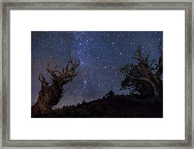 Ancients Framed Print by Cat Connor