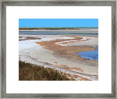 Anclote Curves Framed Print