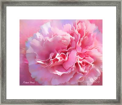 And A Pink Carnation Framed Print