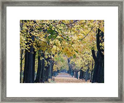 And Autumn Came Framed Print by Janina  Suuronen