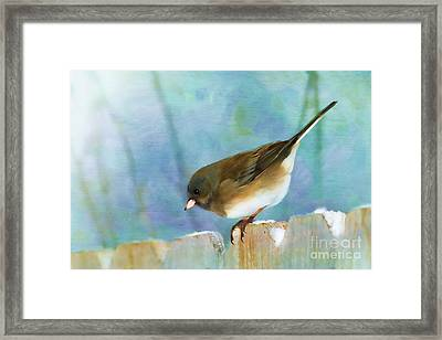 And Down I Go Framed Print by Betty LaRue