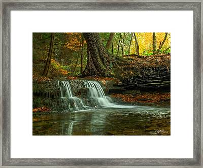 And God Proclaimed His Creation Good Framed Print by Skip Tribby