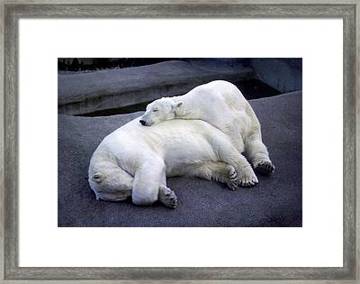 Framed Print featuring the photograph And I Like You Too by Rod Jones