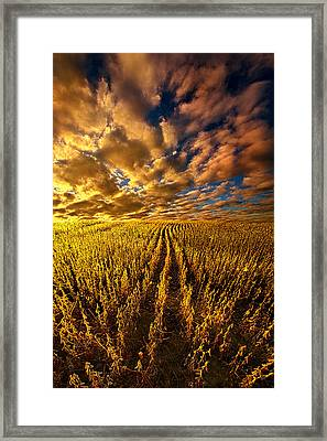 And So We Dream Framed Print
