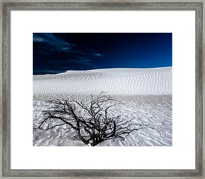 And The Wind Still Blows Framed Print by Julian Cook
