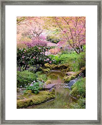 And Then It Was Morning Framed Print