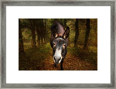 And You Are  ??? Framed Print