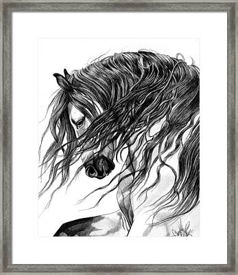 Andalusian Arabian Head Framed Print