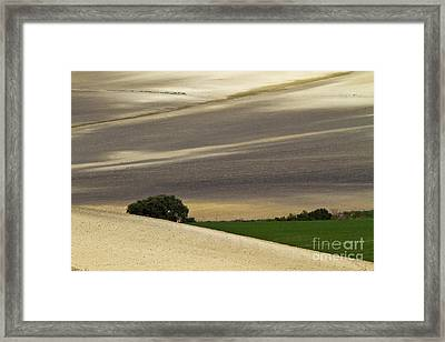 Andalusian Farmland Series-1 Framed Print by Heiko Koehrer-Wagner