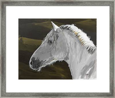 Andalusian Foal Framed Print by Janina  Suuronen