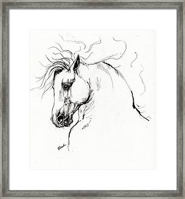 Andalusian Horse Drawing 1 Framed Print