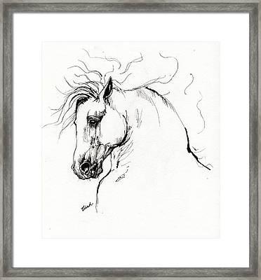 Andalusian Horse Drawing 1 Framed Print by Angel  Tarantella