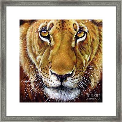 Andre Lion Framed Print