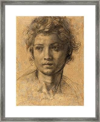 Andrea Del Sarto, Italian 1486-1530, Head Of Saint John Framed Print
