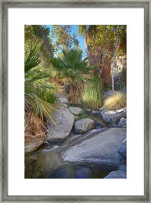 Andreas Canyon Babble Framed Print by Scott Campbell