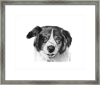 Framed Print featuring the photograph Andy - 032 by Abbey Noelle