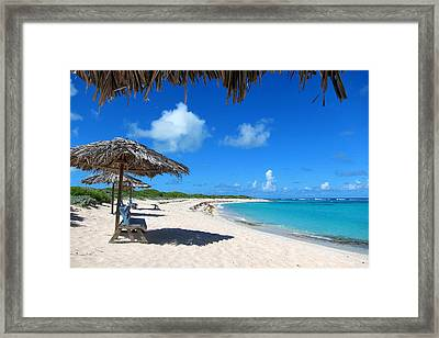 Anegada Framed Print by Laura Hiesinger