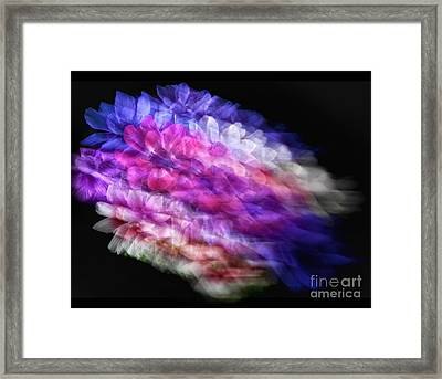 Anemone Abstract Framed Print by Claudia Kuhn