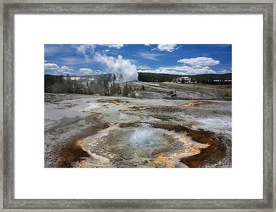 Anemone And Old Faithful In Concert Framed Print
