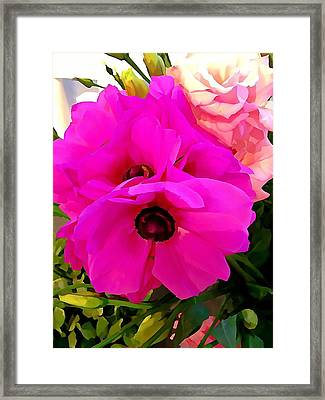 Anemone Framed Print by Anne Sterling