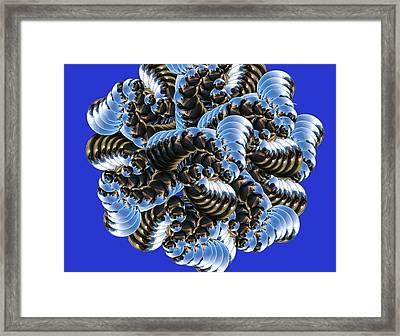 Anemone Framed Print by Soumya Bouchachi