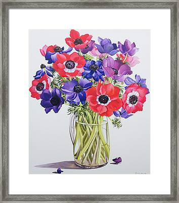 Anemones In A Glass Jug Framed Print by Christopher Ryland