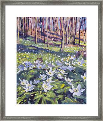 Anemones In The Meadow Framed Print by David Lloyd Glover