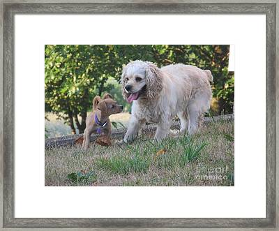 Framed Print featuring the photograph Angel And Chika by Tina M Wenger
