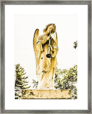 Angel From Dominican Framed Print