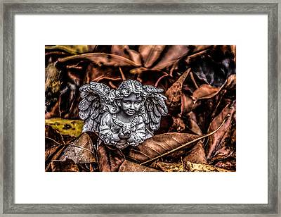 Framed Print featuring the photograph Angel Of Fall by Ray Congrove