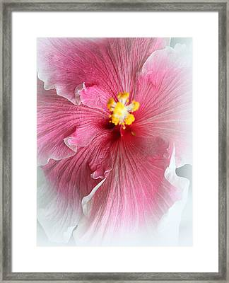 Angel Of Paradise Framed Print