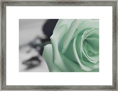 Angel On Earth Framed Print