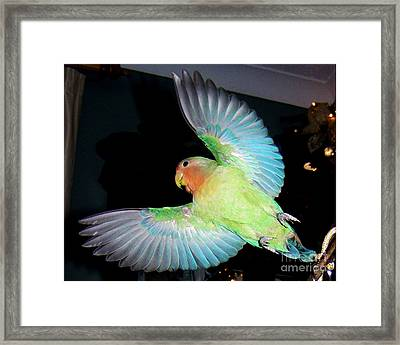Angel Pickle Framed Print
