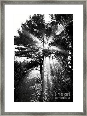 Angel Sun Framed Print