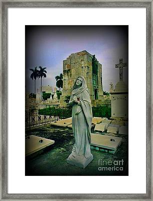 Angel With Rose Framed Print by John Malone