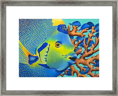 Angelfish Framed Print
