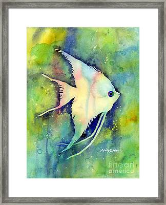 Angelfish I Framed Print by Hailey E Herrera
