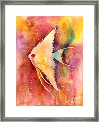 Angelfish II Framed Print by Hailey E Herrera
