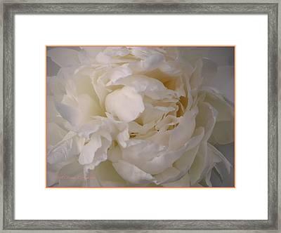 Angelic Beauty Framed Print by Sonali Gangane