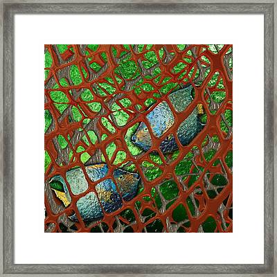 Angels Caught In An Emerald Pool Framed Print