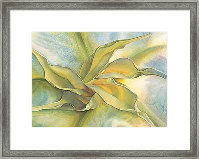 Angel's Pirouette Framed Print