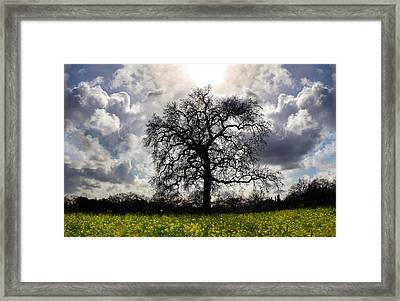 Angels Song Framed Print by Stan Angel