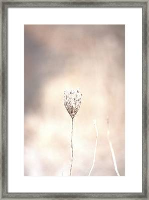 Framed Print featuring the photograph Angel's Touch by The Art Of Marilyn Ridoutt-Greene
