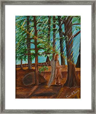 Angle In Idyllwild Framed Print by Cassie Sears