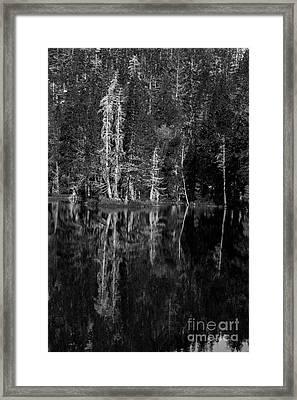 Angora Lake Framed Print
