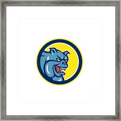 Angry Bulldog Mongrel Head Circle Cartoon Framed Print by Aloysius Patrimonio