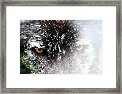 Angry Fog Framed Print