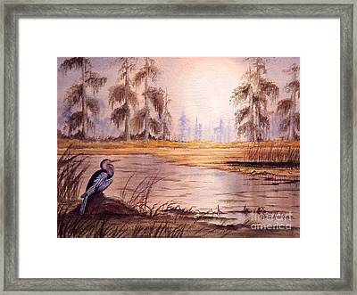 Anhinga At Wakulla Reserve Framed Print by Bill Holkham