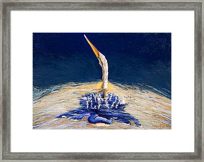 Anhinga Shimmer Framed Print by Kitty Harvill