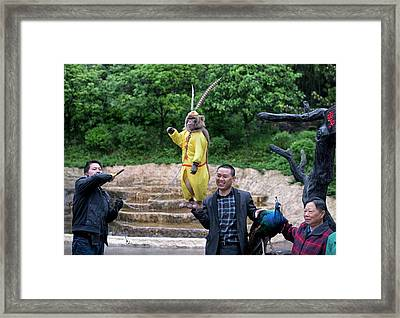 Animal Abuse In A Chinese Zoo Framed Print by Tony Camacho
